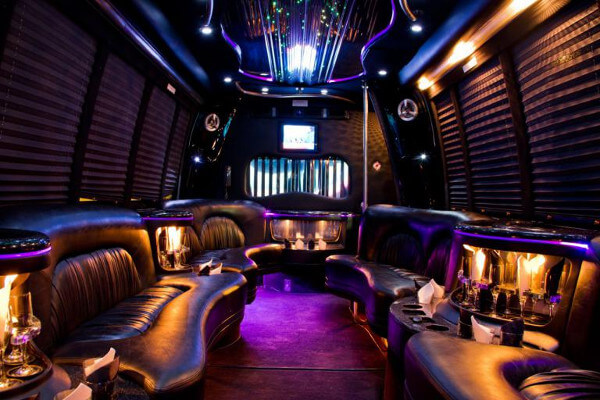 15 Person Party Bus Rental Anaheim